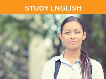 Study English